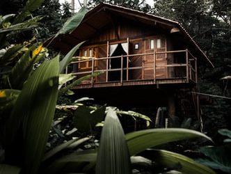 Casas de madera para el futuro